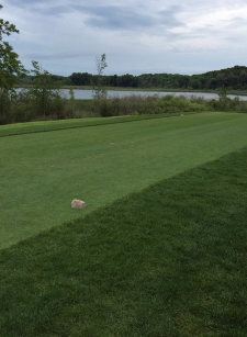 Gull Lake country club hopes to carry on this years success into next year. Photo by Noah Weiss.
