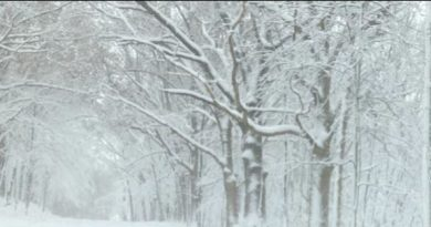 Michigan residents prepare for upcoming cold weather