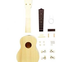 Play the Ukulele: Just get a kit
