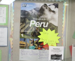 Model UN adviser Sheila Wood plans service learning trip to Peru