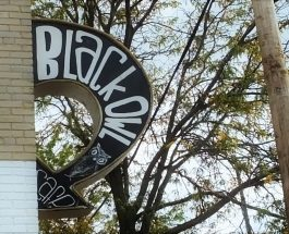 Black Owl Cafe: Local cuisine and roasted beans