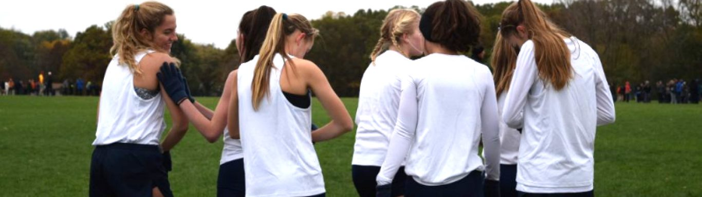 Gull Lake Cross Country competes at regionals,  sends three athletes to state finals