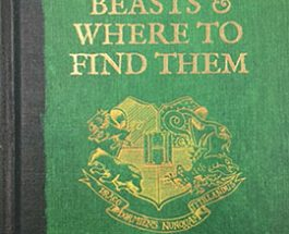 Fantastic Beasts and Where To Find Them: A new era
