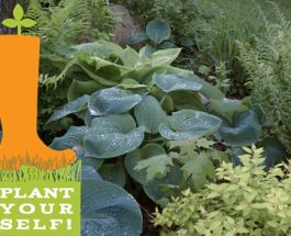 Come 'Plant Yourself' with Richland Community Center