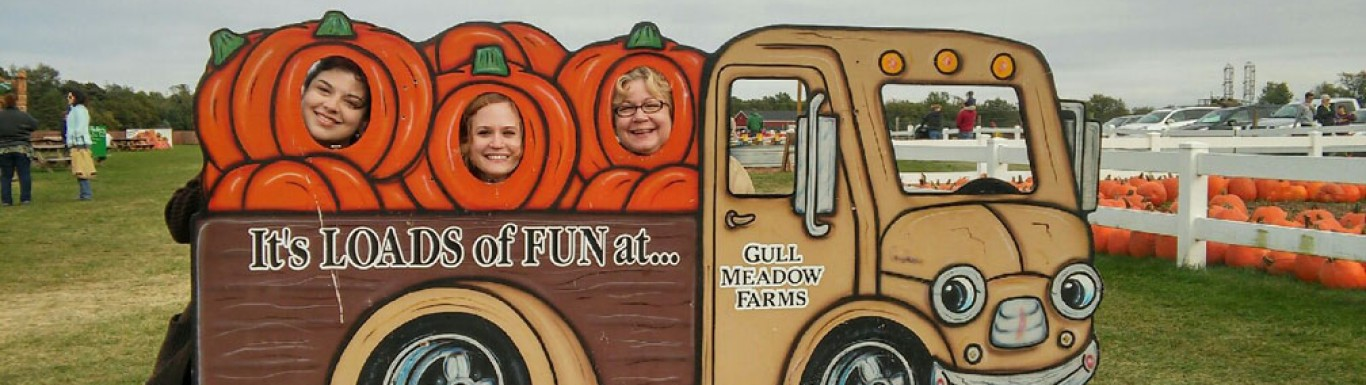 Corn Maze opens at Gull Meadow Farms