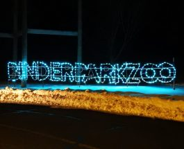 Binder Park Zoo continues classic zoo tradition of Zoo Lights